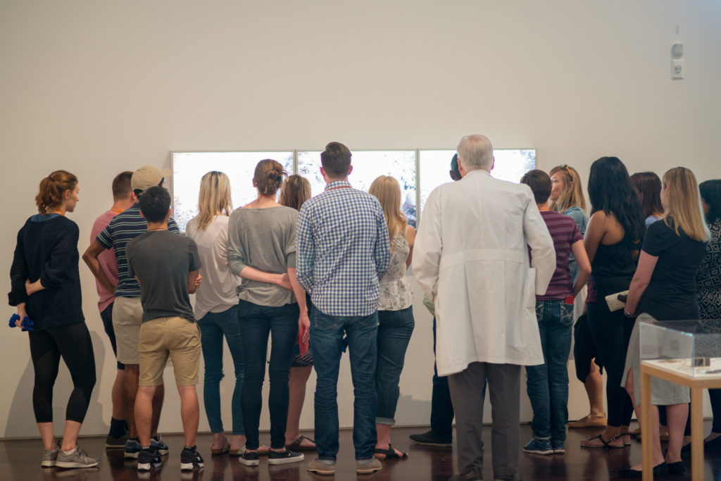 Students from UT's Dell Medical School viewing art